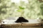 Persönliches Wachstum